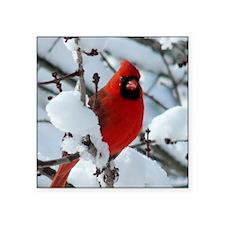 "Snow Cardinal Square Sticker 3"" x 3"""