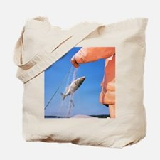 Catching a european perch fish Tote Bag