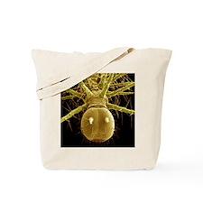 Caterpillar head, SEM Tote Bag