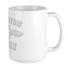 EVANSTON ROCKS Mug