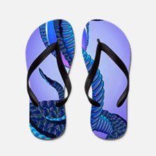 A Big Blue Snake Flip Flops