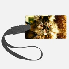 Persian Kitten face Luggage Tag
