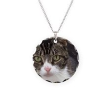 Tabby Cat Stare with Green E Necklace