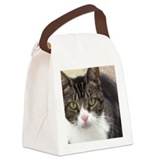 Tabby Cat Stare with Green Eyes Canvas Lunch Bag