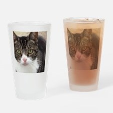 Tabby Cat Stare with Green Eyes Drinking Glass