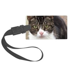 Tabby Cat Stare with Green Eyes Luggage Tag