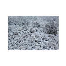 Snow Desert Rectangle Magnet