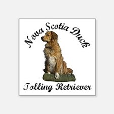 "toller Square Sticker 3"" x 3"""