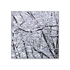 "Snow Trees Square Sticker 3"" x 3"""