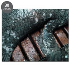 Coelacanth fish fin Puzzle
