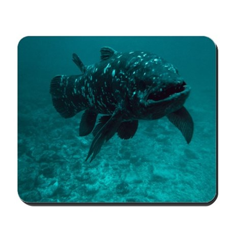 Coelacanth fish Mousepad