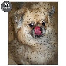 Tibbie Tricks Puzzle