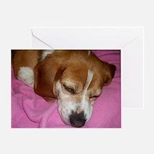 Dog Nap! Greeting Card