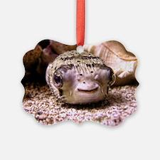 Blowfish Picture Ornament