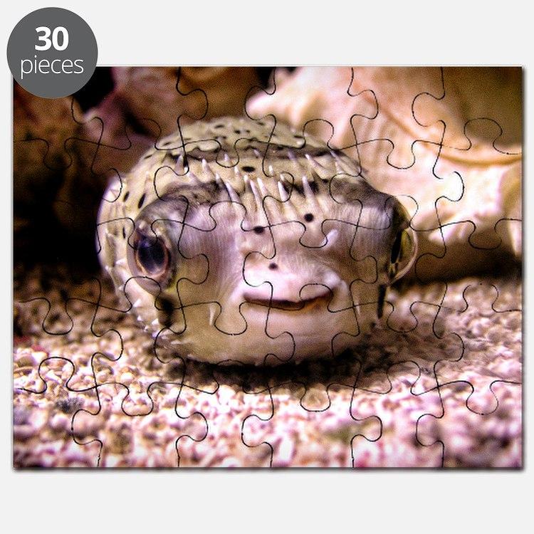 Blowfish Puzzle