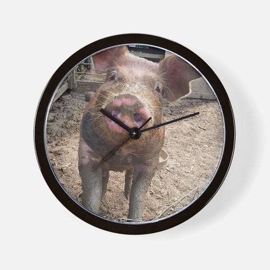 Funny Muddy Red Pig Wall Clock