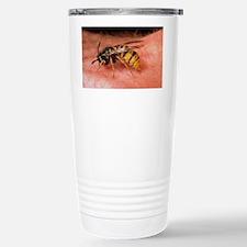 Common wasp (Vespula vu Travel Mug