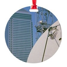 Communications dish, with Canary Wh Ornament