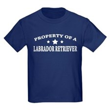 Property of Lab T