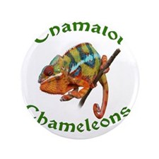 "Chamalot Chameleons 3.5"" Button"