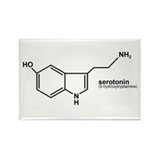 Serotonin Rectangle Magnet