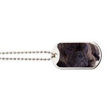 French bulldog - totally contented Dog Tags