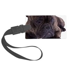 French bulldog - totally content Luggage Tag