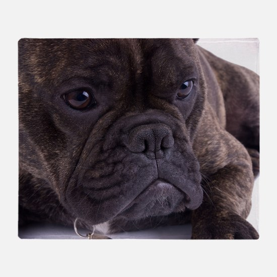 French bulldog - totally contented Throw Blanket