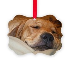 You Snooze, You Lose Ornament