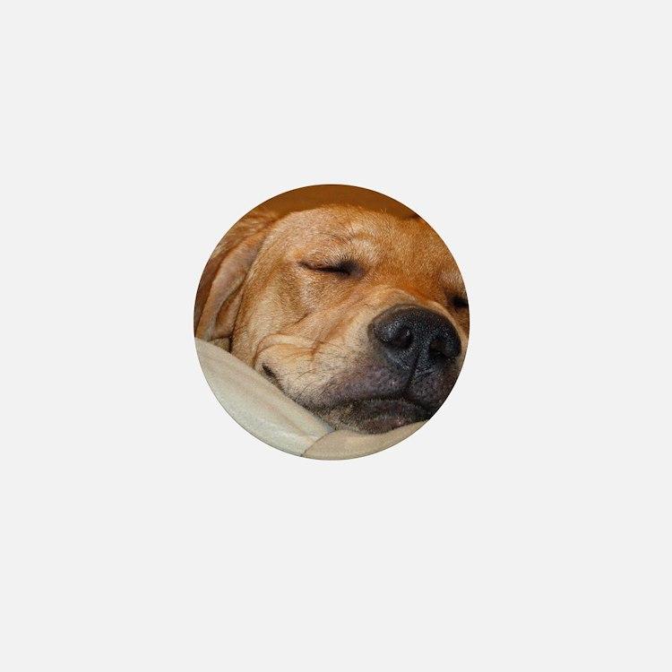 You Snooze, You Lose Mini Button