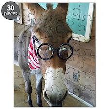 Smart Ass Puzzle