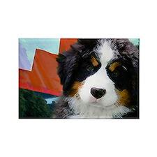 Swiss Berner Puppy 8x7 Rectangle Magnet