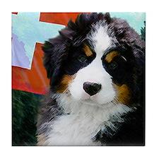Swiss Berner Puppy Tile Coaster