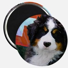 Swiss Berner Puppy Magnet