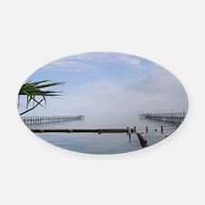 The Palm Tree Where the Ocean Meet Oval Car Magnet