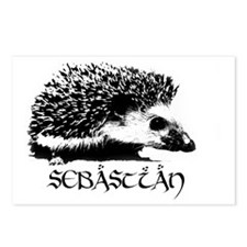 Sebastian the Hedgehog Postcards (Package of 8)