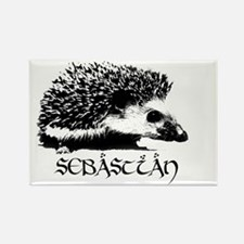Sebastian the Hedgehog Rectangle Magnet