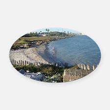 Seashells, the Ocean and The Beach Oval Car Magnet