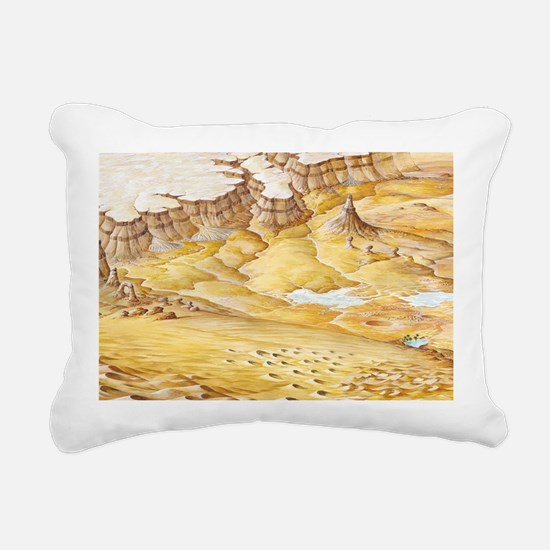 Desert features Rectangular Canvas Pillow
