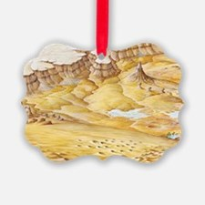Desert features Ornament