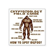 "how to spot bigfoot Square Sticker 3"" x 3"""