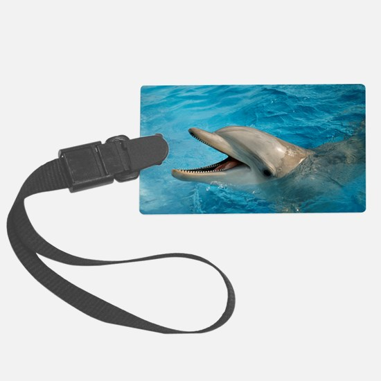 Dolphin in captivity Luggage Tag