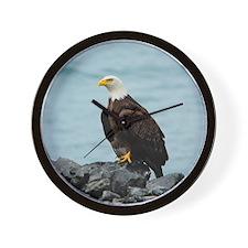 ipadMini_Eagle_2 Wall Clock