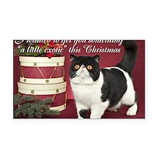 Exotic Shorthair Cat Christma Rectangle Car Magnet