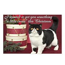 Exotic Shorthair Cat Chri Postcards (Package of 8)