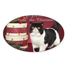 Exotic Shorthair Cat Christmas Card Decal