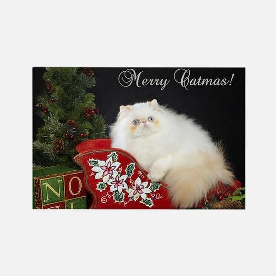 Himalayan Cat Christmas Card Rectangle Magnet