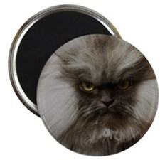 Colonel Meow scowl face Magnet