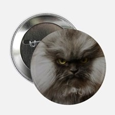 """Colonel Meow scowl face 2.25"""" Button"""