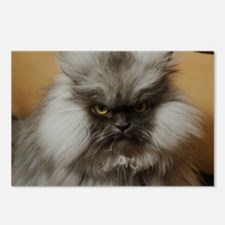 Colonel Meow scowl face Postcards (Package of 8)
